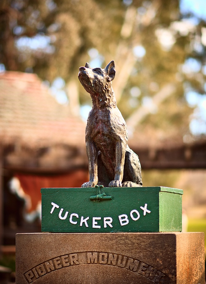 The Dog On The Tucker Box main
